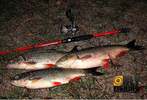 Спиннинг Metsui Reflex 702ML - обзор и тест на рыбалке