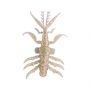 "Силикон Bait Breath Skeleton Shrimp 2.7"" #S874 Reaction Shrimp"