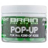 Brain Pop-Up