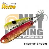 Acme Trophy Spoon